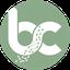 Bettex Coin (BTXC) Logo