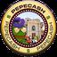 Pepe Cash (PEPECASH) Logo